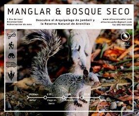 Manglar y bosque seco All Sur Ecuador